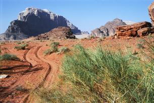 Jordan, dirt path toward rock formationsの写真素材 [FYI04319984]