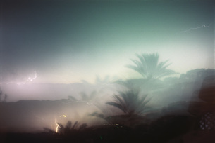 Lightning and palm tree, double exposureの写真素材 [FYI04319987]