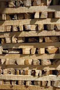 Stacked woodの写真素材 [FYI04319990]