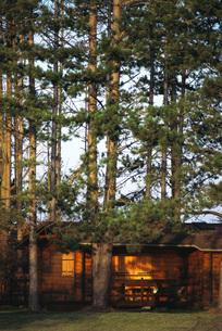 Log cabin in woodsの写真素材 [FYI04320002]