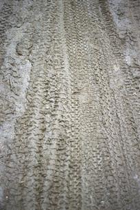 Bike tracks in mudの写真素材 [FYI04320006]