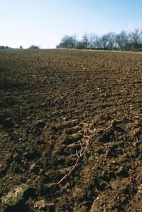 Plowed fieldの写真素材 [FYI04320023]