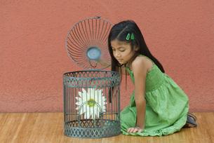 Girl opening up birdcageの写真素材 [FYI04320061]