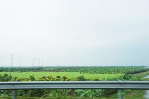 Field of crops seen from highwayの写真素材 [FYI04320400]