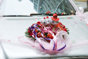 Wedding decorations on hood of carの写真素材 [FYI04320449]