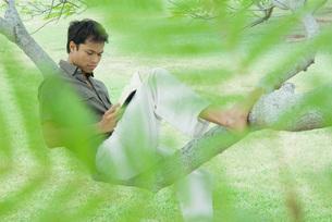 Man resting on tree branch, reading bookの写真素材 [FYI04320753]