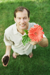 Man holding up gerbera daisy at cameraの写真素材 [FYI04320857]