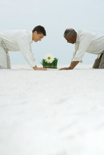 Two men down on all fours in sandの写真素材 [FYI04320912]