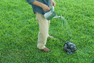 Man watering pile of stonesの写真素材 [FYI04321101]