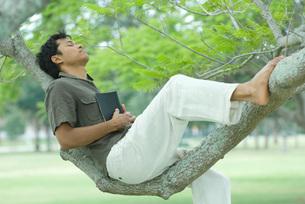 Man resting on tree branchの写真素材 [FYI04321348]