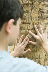 Boy putting adhesive bandage on treeの写真素材 [FYI04321405]