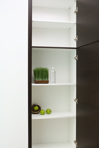 Sparse pantry containing apples in nestの写真素材 [FYI04321620]