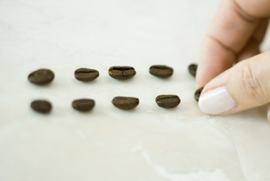 Woman placing coffee beans in linesの写真素材 [FYI04321632]