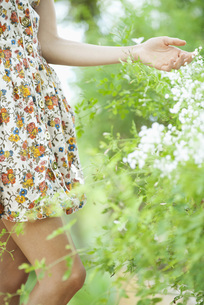 Woman touching wildflowers, mid sectionの写真素材 [FYI04321819]