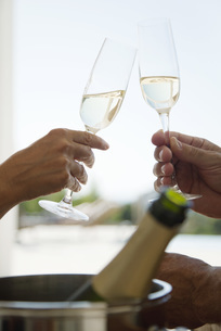 Couple toasting with champagne, croppedの写真素材 [FYI04322005]