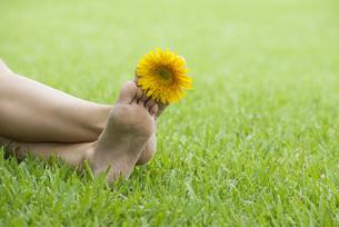 Holding flower between toesの写真素材 [FYI04322114]