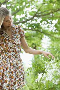 Young woman touching wildflowersの写真素材 [FYI04322123]