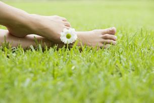 Holding flower between toesの写真素材 [FYI04322362]