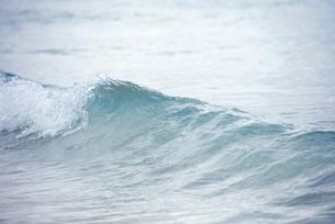 Ocean waveの写真素材 [FYI04322511]