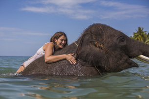 Side view of woman climbing on elephant in waterの写真素材 [FYI04322743]