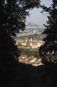 High angle view of town seen through trees on hill, Prague, Czech Republicの写真素材 [FYI04322812]