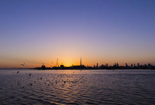 Scenic view of silhouette city by river against clear sky during sunset, Dubai, United Arab Emiratesの写真素材 [FYI04322815]