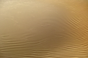 Full frame shot of sand dunes in desertの写真素材 [FYI04322830]