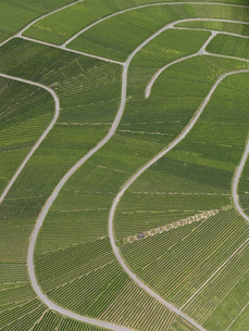 Aerial view of agricultural landscape, Hohenheim, Stuttgart, Baden-Wuerttemberg, Germanyの写真素材 [FYI04322913]