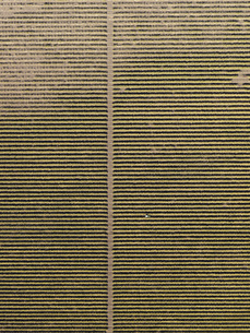 Full frame aerial view of crops in agricultural landscapeの写真素材 [FYI04322938]