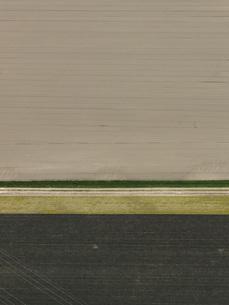 Full frame shot of agricultural landscapeの写真素材 [FYI04322940]
