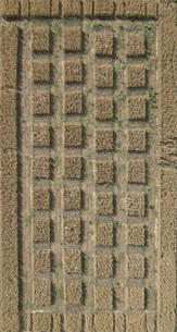 Full frame aerial view of crops in agricultural landscape, Stuttgart, Baden-Wuerttemberg, Germanyの写真素材 [FYI04322950]