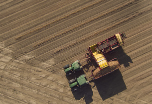 Directly above view of combine harvester in fieldの写真素材 [FYI04322979]