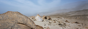 Panoramic view of cave painting on rock in desert, Toro Muerto Petroglyphs, Peruの写真素材 [FYI04323050]