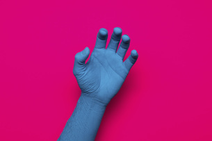 Close-up of blue painted hand gesturing against pink backgroundの写真素材 [FYI04323069]
