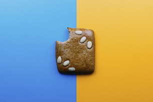 Directly above shot of eaten cookie on blue and yellow backgroundの写真素材 [FYI04323074]