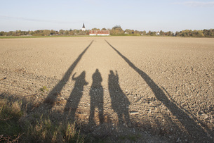 Shadow of people on field during summerの写真素材 [FYI04323159]