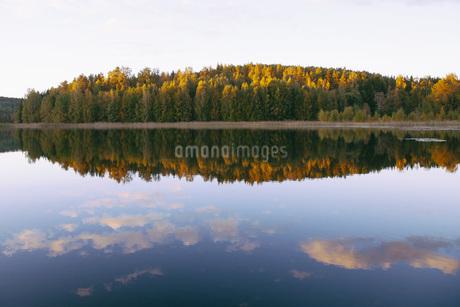 Scenic view of autumn trees nu calm lakeの写真素材 [FYI04323164]