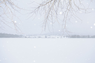 Idyllic view of snow covered landscapeの写真素材 [FYI04323178]