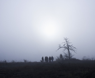 Silhouette people by bare tree on field against skyの写真素材 [FYI04323191]