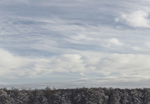 Scenic view of snow covered trees against cloudy skyの写真素材 [FYI04323217]