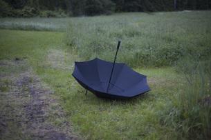 Upside down umbrella in grassy fieldの写真素材 [FYI04323248]