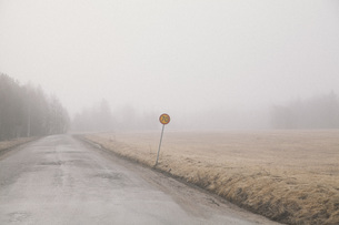 Country road by field in foggy weather against skyの写真素材 [FYI04323435]