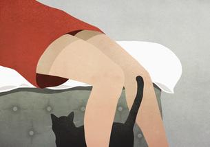 Black cat rubbing against womans legsのイラスト素材 [FYI04323687]
