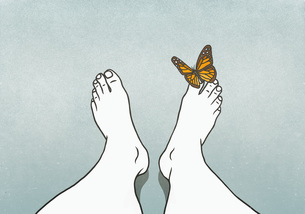 Butterfly landing on mans toeのイラスト素材 [FYI04323748]
