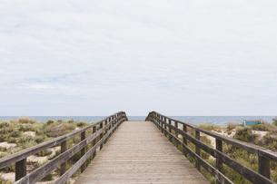 Boardwalk leading to ocean beach, Manta Rota, Algarve, Portugalの写真素材 [FYI04323754]