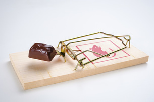 Chocolate on mousetrapの写真素材 [FYI04323790]