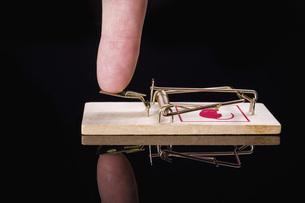 Finger pressing mousetrapの写真素材 [FYI04323794]