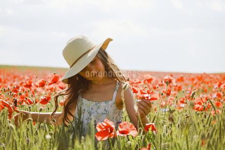 Serene girl picking red poppies in sunny, idyllic rural fieldの写真素材 [FYI04323799]