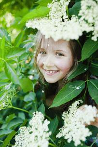 Portrait smiling girl hiding in blooming bushの写真素材 [FYI04323800]