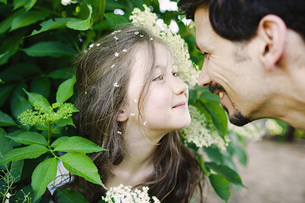 Affectionate father and daughter at flowering bushの写真素材 [FYI04323807]